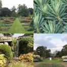 2011-09-16<br/> <b>Kew Gardens</b><br/> (Order Beds, Grasses, Economic Botany.)